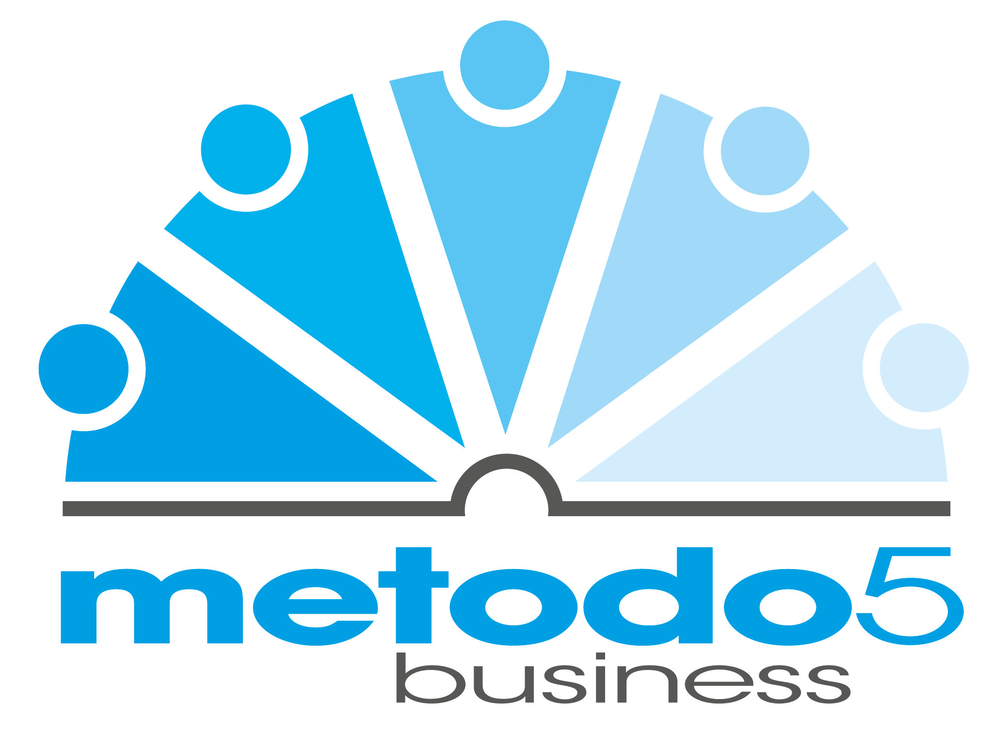 Business coaching, Metodo5